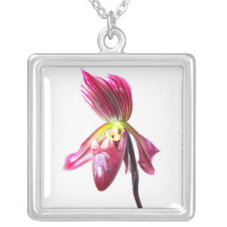 Flor púrpura de la orquídea de deslizador contra l collar personalizado