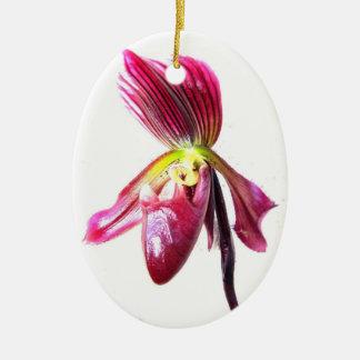 Flor púrpura de la orquídea de deslizador contra l adorno para reyes