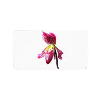 Flor púrpura de la orquídea de deslizador contra l etiqueta de dirección