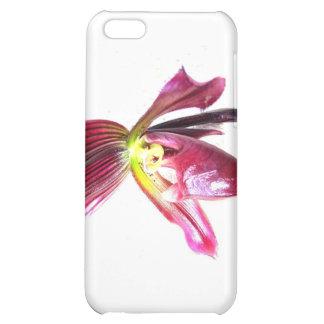 Flor púrpura de la orquídea de deslizador contra l