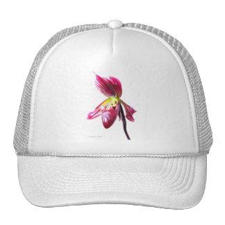 Flor púrpura de la orquídea de deslizador contra l gorros bordados