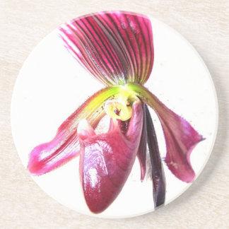 Flor púrpura de la orquídea de deslizador contra l posavasos para bebidas