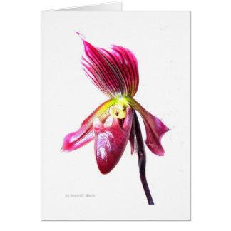 Flor púrpura de la orquídea de deslizador contra l tarjetas
