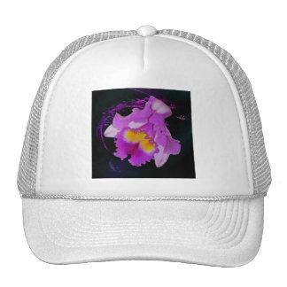 Flor púrpura de la orquídea gorros