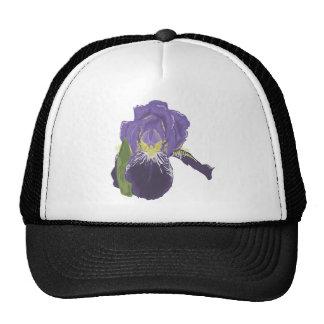 Flor púrpura de la orquídea gorro de camionero