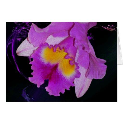 Flor púrpura de la orquídea tarjeta de felicitación