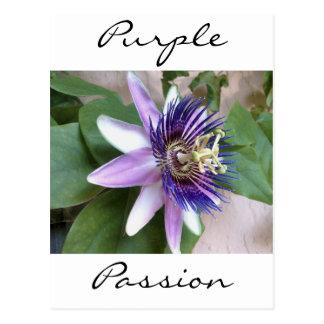 Flor púrpura de la pasión postal