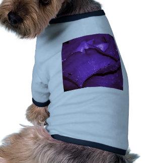Flor púrpura de los rosas camiseta de perro