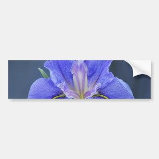 Flor púrpura del iris pegatina de parachoque
