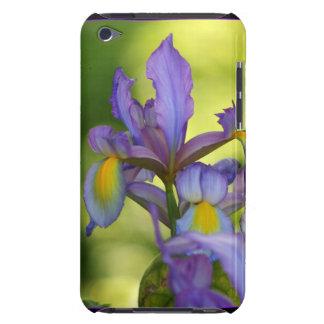 Flor púrpura del iris barely there iPod coberturas