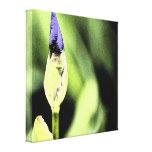 Flor púrpura del iris impresión en lona