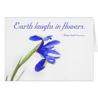 Flor púrpura del iris - la tierra ríe en flores tarjetas