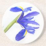 Flor púrpura del iris posavasos manualidades