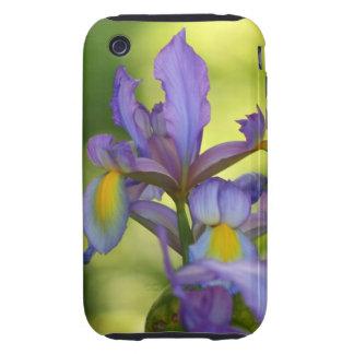 Flor púrpura del iris tough iPhone 3 cobertura