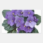 Flor púrpura del jardín de la violeta africana rectangular altavoz