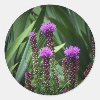 flor púrpura del tasseld pegatina redonda