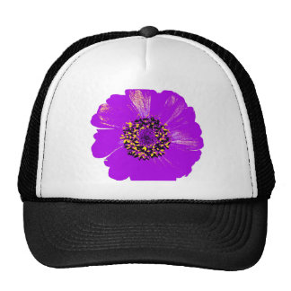 Flor púrpura del Zinnia Gorra