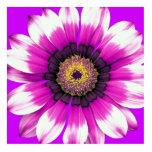 Flor púrpura escultura fotografica