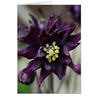 Flor púrpura felicitaciones