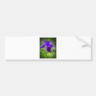 Flor púrpura germánico Digital del iris pintada Pegatina Para Auto