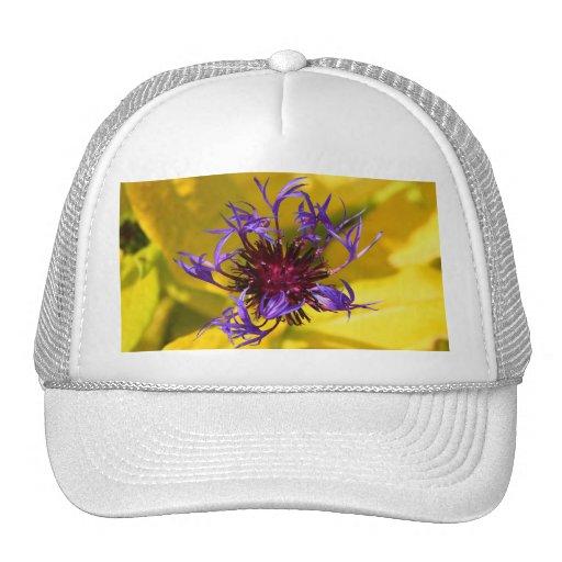 Flor púrpura gorro