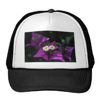 Flor púrpura gorro de camionero
