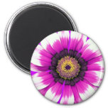 Flor púrpura iman de nevera