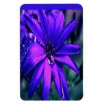 Flor púrpura imán de vinilo