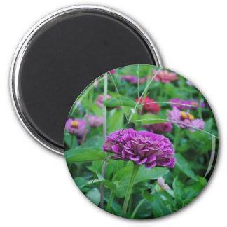 Flor púrpura imán redondo 5 cm