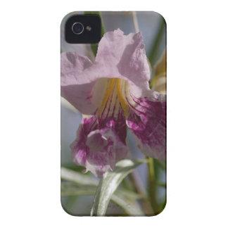 Flor púrpura iPhone 4 carcasas