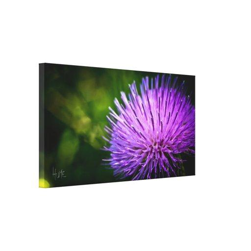 Flor púrpura lona estirada galerías