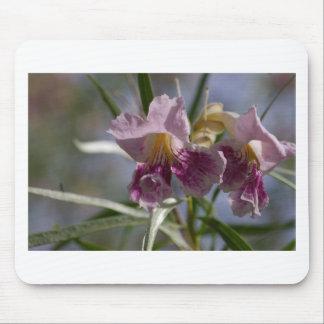 Flor púrpura mousepad