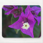 Flor púrpura Mousepad Alfombrillas De Ratones