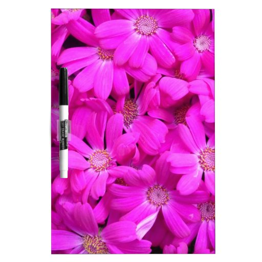 Flor púrpura pizarras blancas