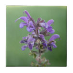 Flor púrpura por Terrill Teja Cerámica