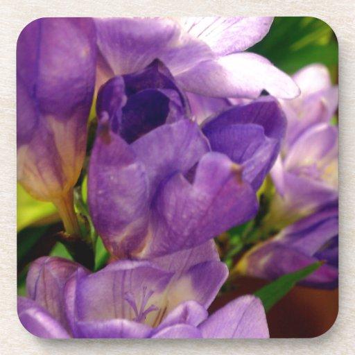 Flor púrpura posavaso