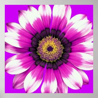 Flor púrpura póster