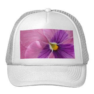 Flor púrpura rosada del pensamiento gorro de camionero