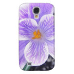 Flor púrpura sin defectos del azafrán