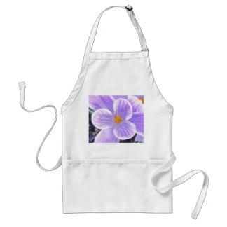 Flor púrpura sin defectos del azafrán delantal
