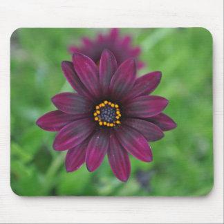 Flor púrpura alfombrilla de ratones