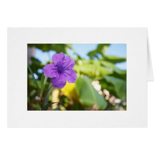 Flor púrpura tarjeta