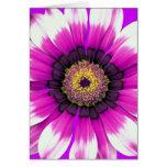 Flor púrpura tarjetón