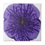 Flor púrpura tejas