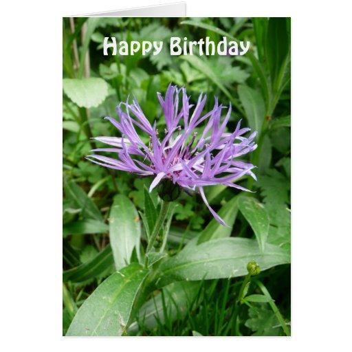 Flor púrpura Templat del botón del soltero del Cor Felicitacion