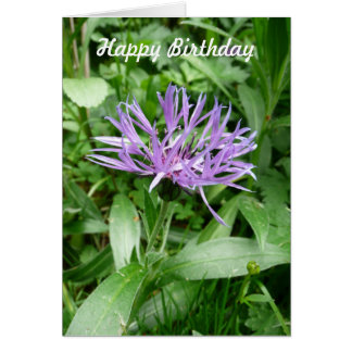 Flor púrpura Templat del botón del soltero del Tarjeta De Felicitación