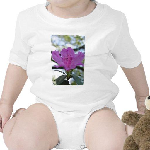 Flor púrpura traje de bebé