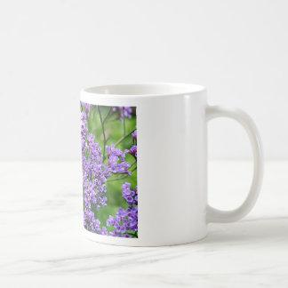 Flor púrpura y blanca de Statice (limonium) en la Taza De Café