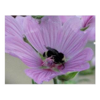 Flor purpúrea clara con la abeja postal