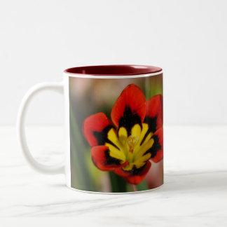 Flor que se acariciará taza de dos tonos